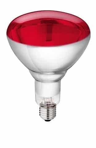 Infraraudonųjų spindulių lempos Philips 150W